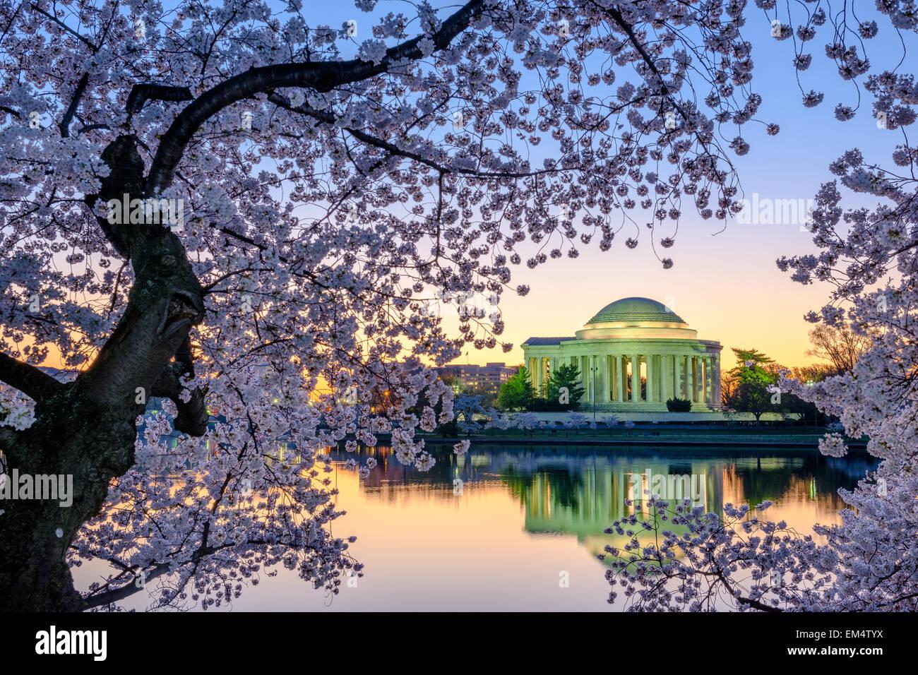 Washington, DC, en el Jefferson Memorial durante la primavera. Imagen De Stock