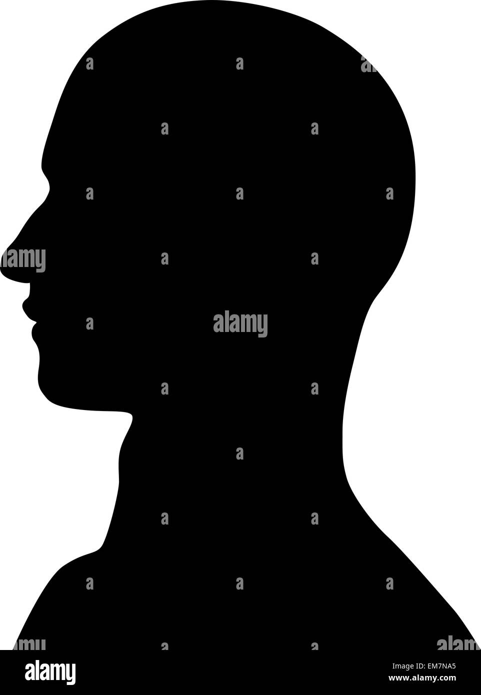 Cabeza humana Imagen De Stock