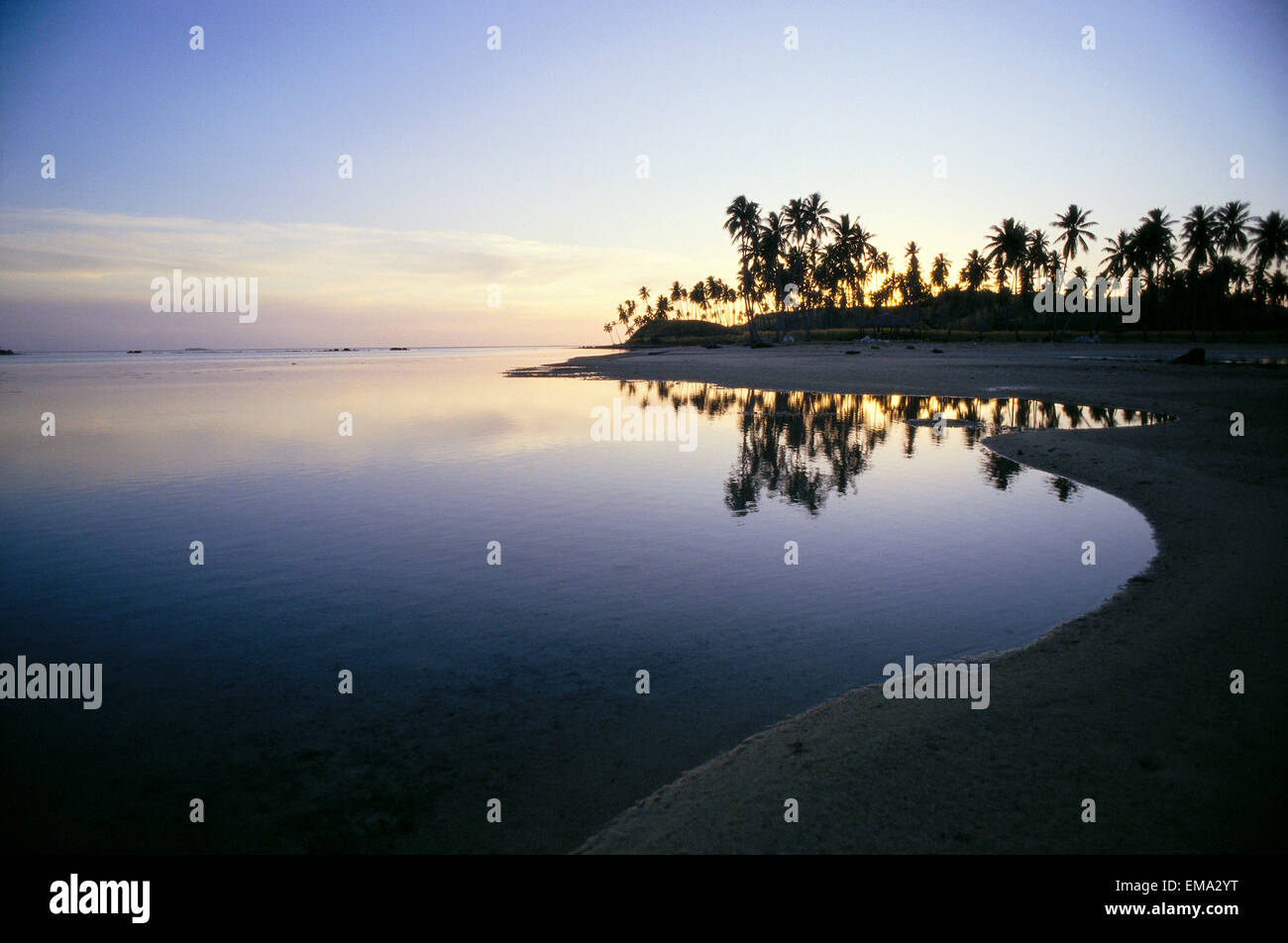 Fiji, Islas Mamanuca, a Malololailai Isla, atardecer tropical a lo largo de la costa de aguas tranquilas Palmeras Imagen De Stock