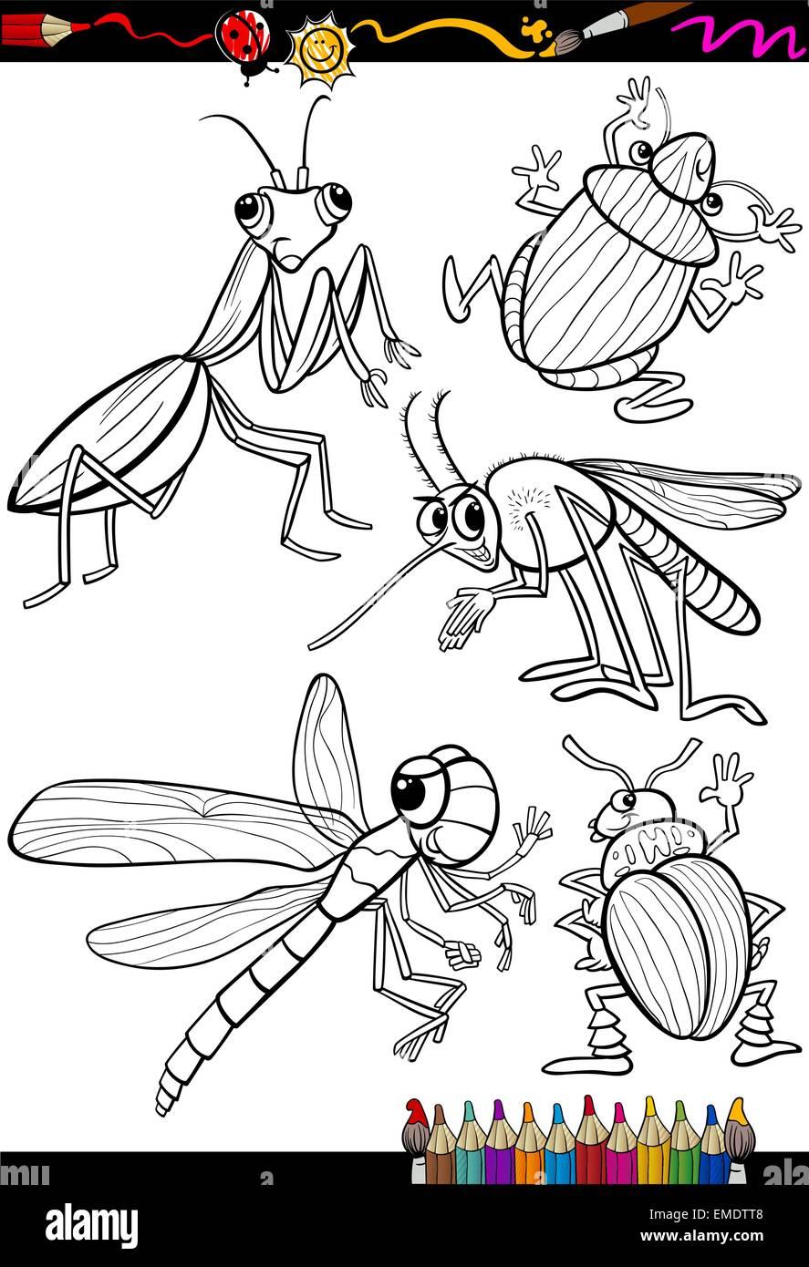 Cartoon Insectos Para Colorear Ilustración Del Vector Imagen