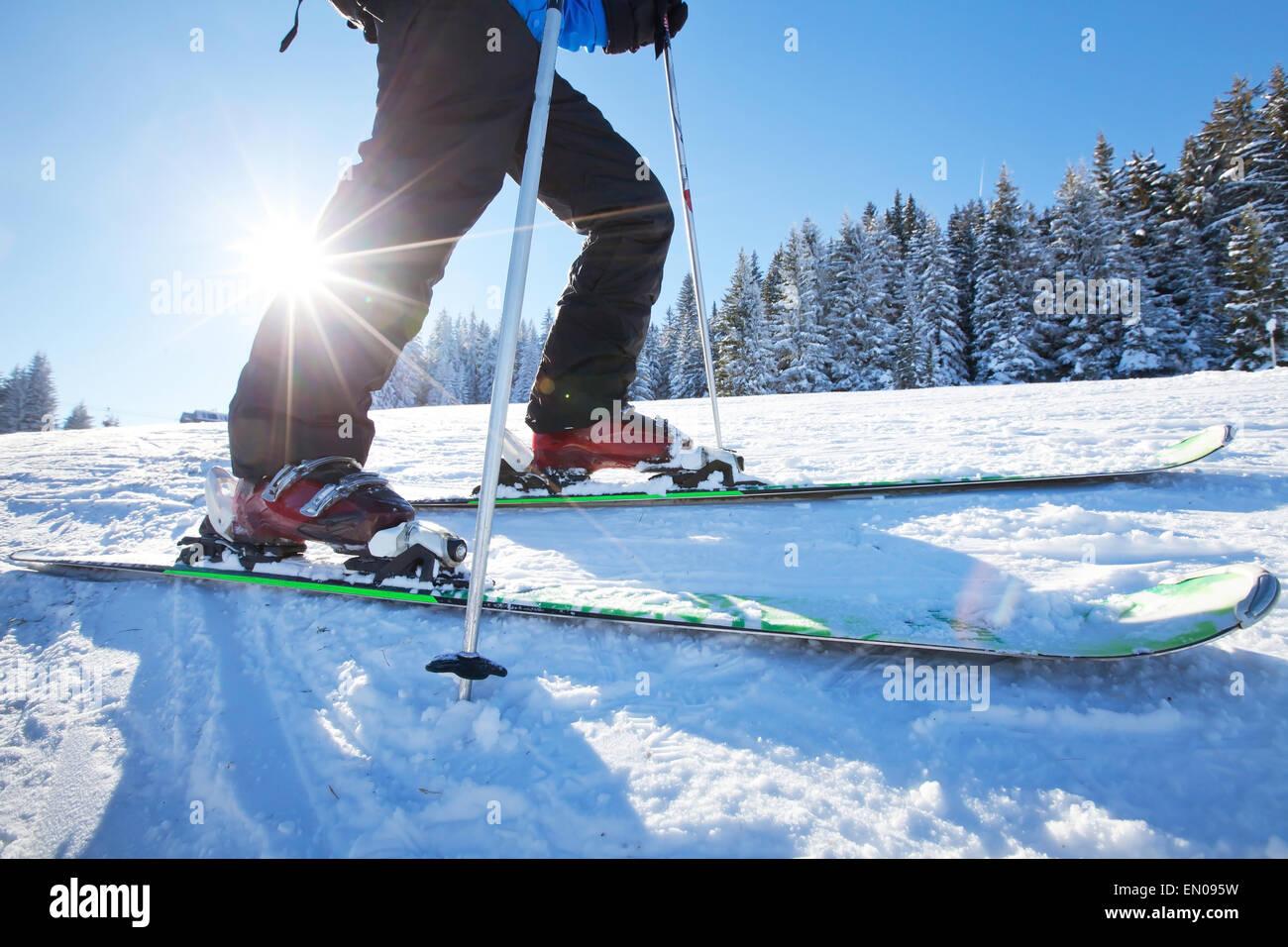 Cierre de ángulo bajo de esquí Imagen De Stock
