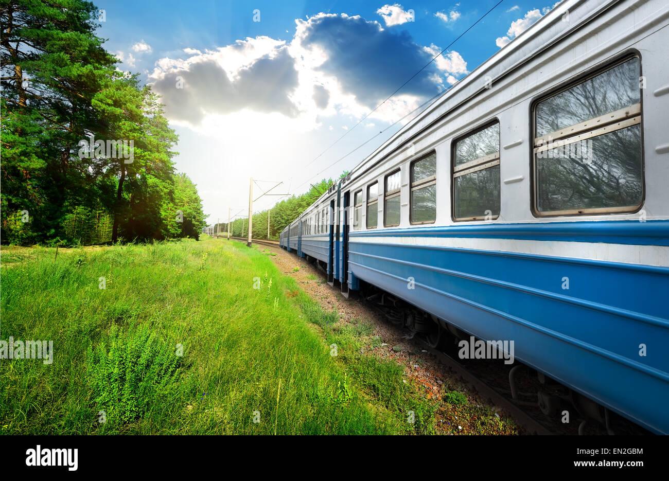 Vagón de tren y bosque de pinos en día soleado Imagen De Stock