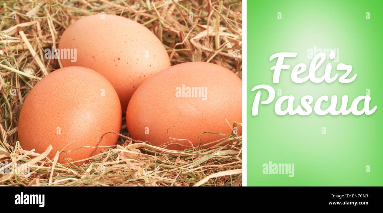 Imagen compuesta de feliz Pascua Imagen De Stock