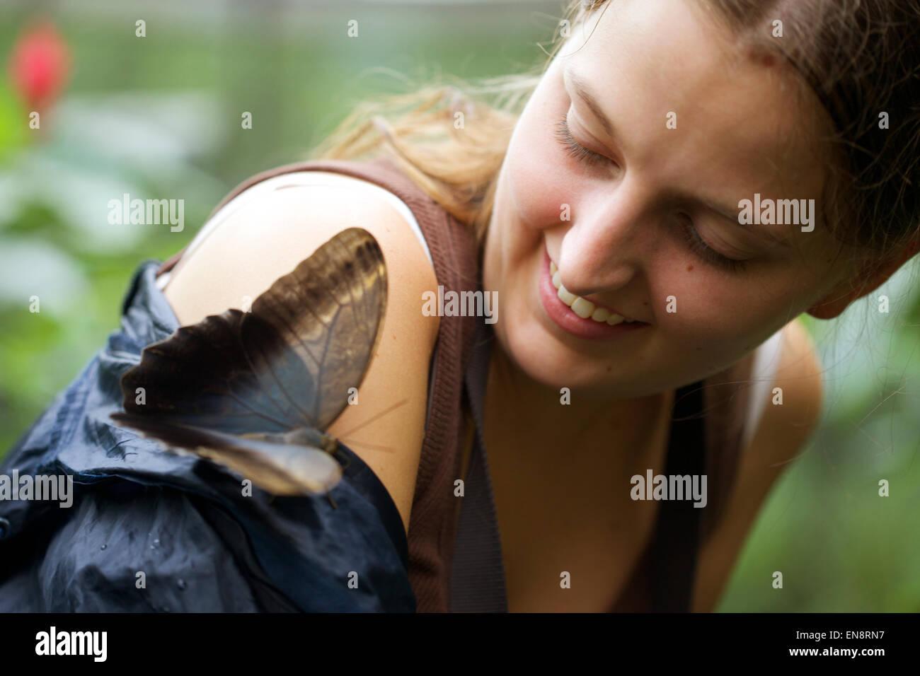 Una joven mujer maravilla ante una gran mariposa que ha aterrizado en su brazo. Imagen De Stock