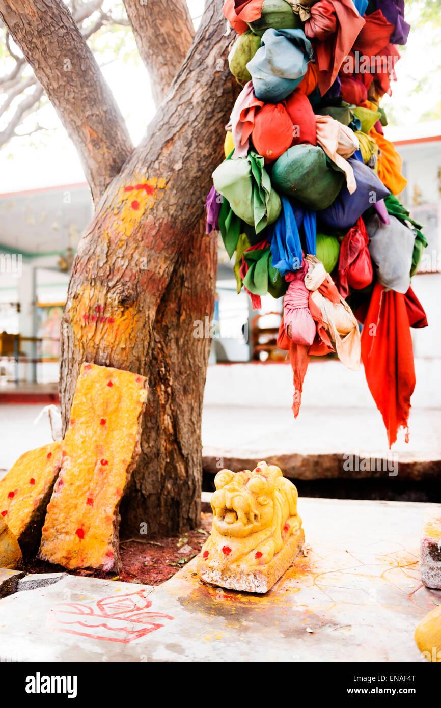 Deseo Árbol y santuario en el templo, Anegundi Durgadevi. Foto de stock