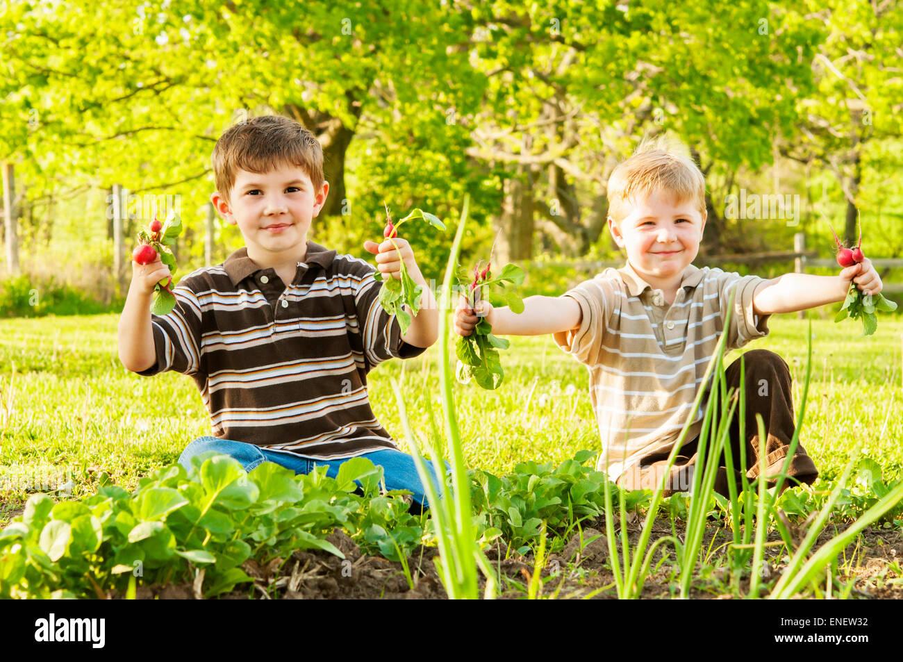 Los niños celebración rábanos cogidas de Spring Garden Foto de stock