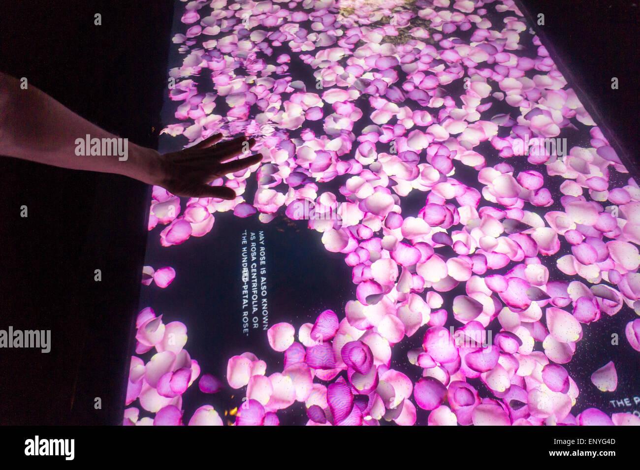 b8d951af22401b Los visitantes se entretienen en un perfume Chanel No.5 interactivo  branding evento en Nueva