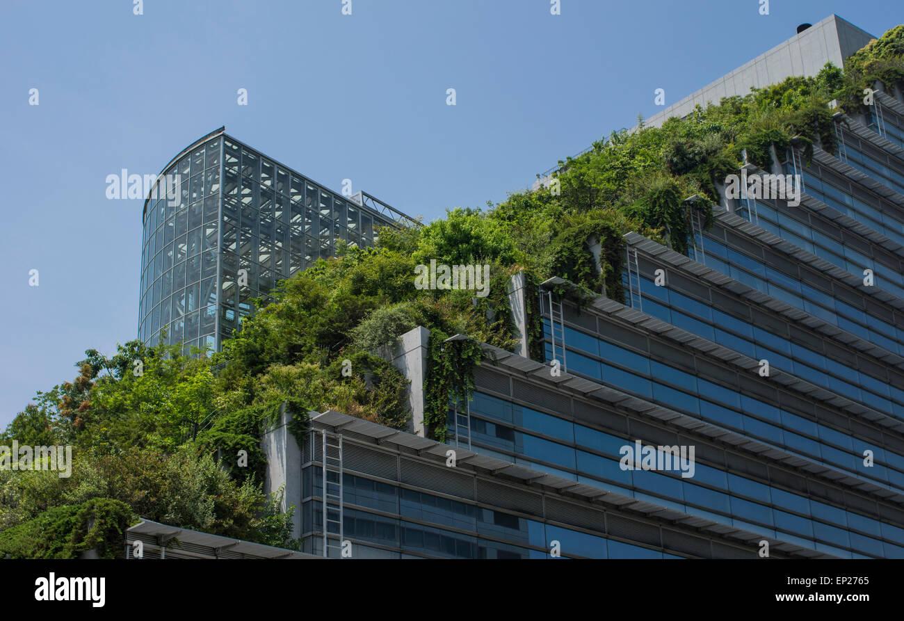 ACROS Fukuoka, Fukuoka, Japón. Arquitectura ecológica, utilizando paso verde jardín exterior. Imagen De Stock