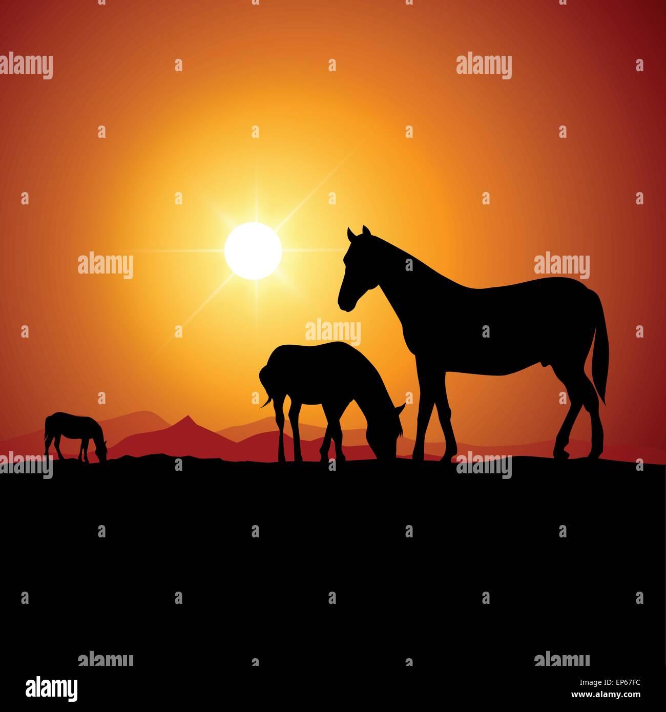 Dos caballos salvajes al atardecer. Ilustración vectorial Ilustración del Vector