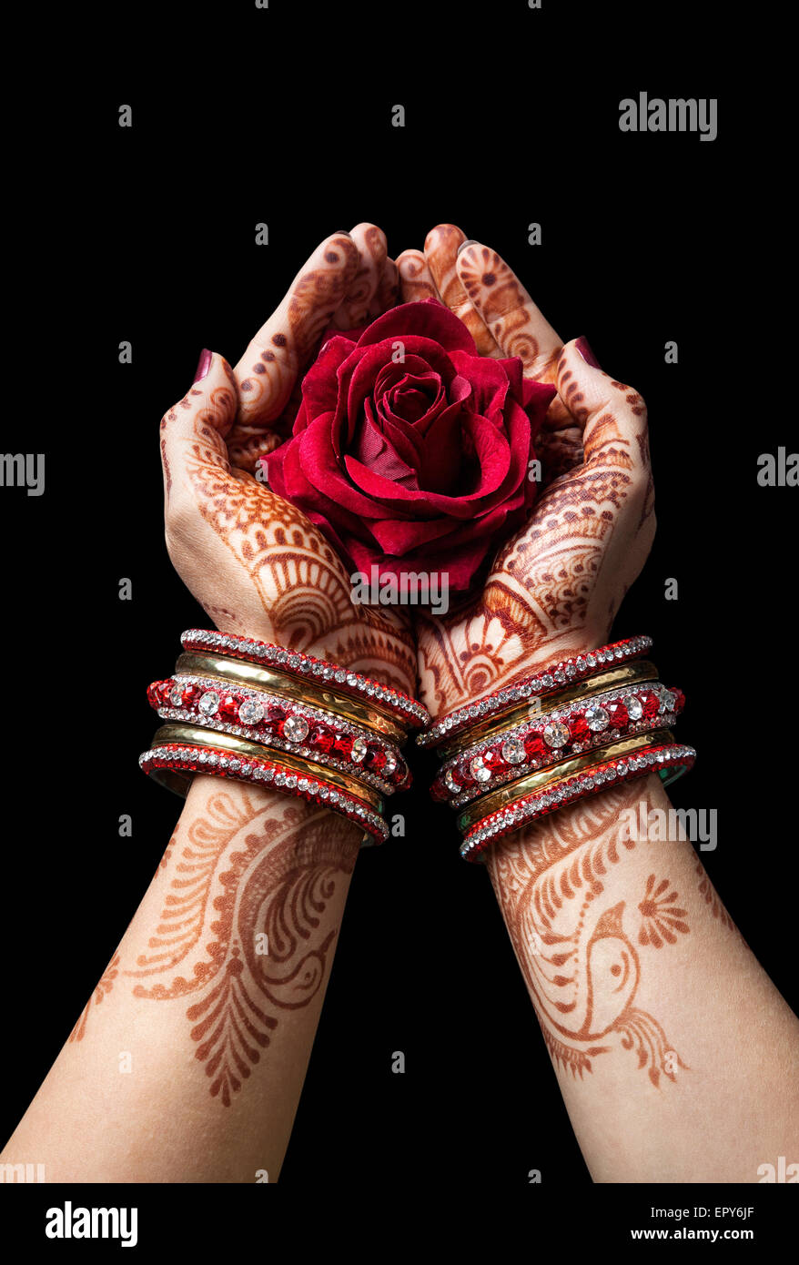 Mujer de manos con henna celebración rosa roja aislado sobre fondo negro con trazado de recorte Imagen De Stock