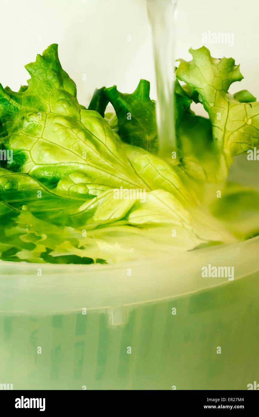Ensalada verde agua fluyendo Imagen De Stock