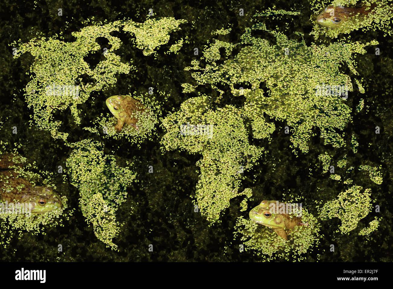 Concepto del hábitat global y el mundo de la conservación del medio ambiente verde limpio con una lenteja Imagen De Stock
