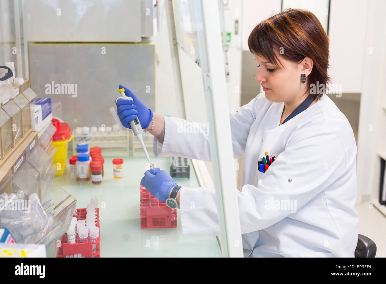 Análisis de plomo en la sangre (envenenamiento por plomo). Laboratorio de Toxicología Analítica ambiental Imagen De Stock