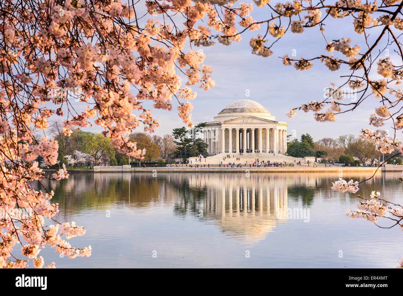 Washington, DC, en el Tidal Basin y el Jefferson Memorial durante la primavera. Imagen De Stock