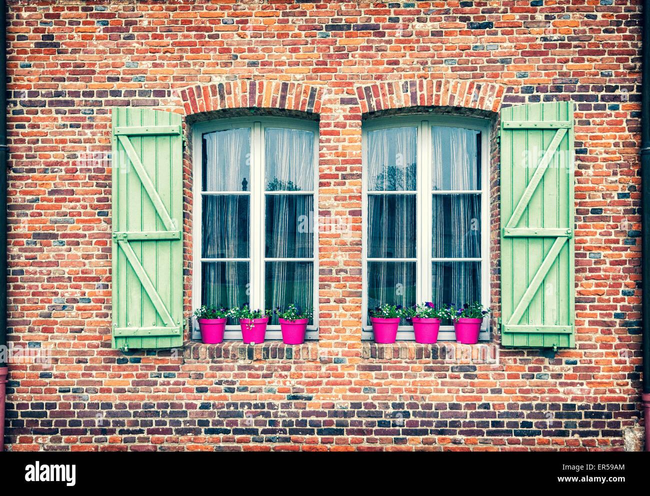 Château de Martainville - windows Imagen De Stock