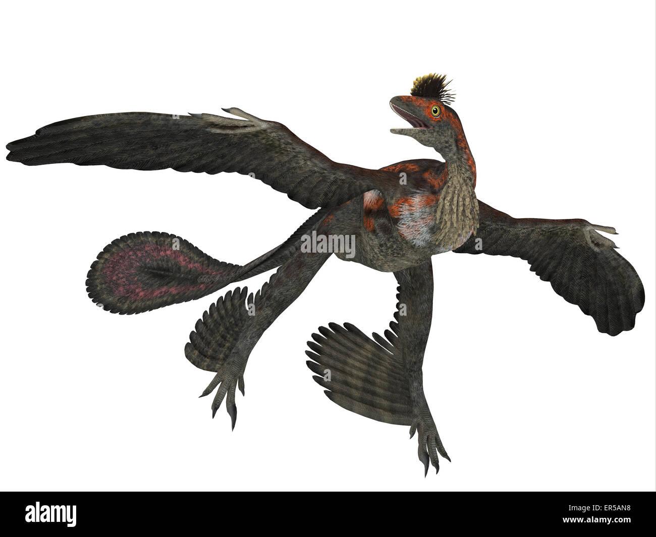 Dinosaurio Volador Imágenes De Stock Dinosaurio Volador Fotos De