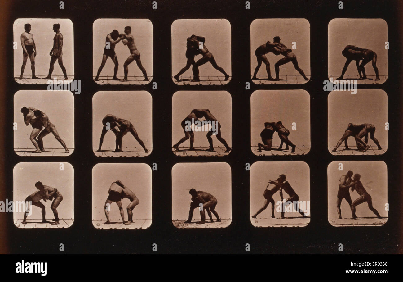 Los atletas. Wrestling. Fotografía muestra 15 imágenes consecutivas de dos hombres luchando. Fecha c1881. Imagen De Stock