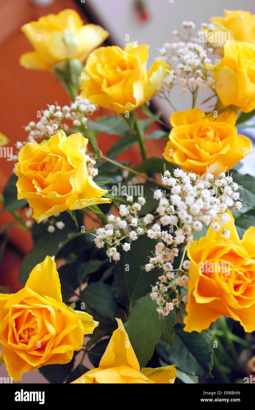 Ramillete De Flores De Bonitas Rosas Amarillas Y Gypsophila