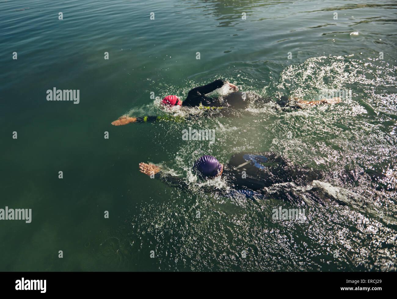 Vista de los nadadores en el agua. Los participantes practicar natación Triatlón para el evento. Imagen De Stock