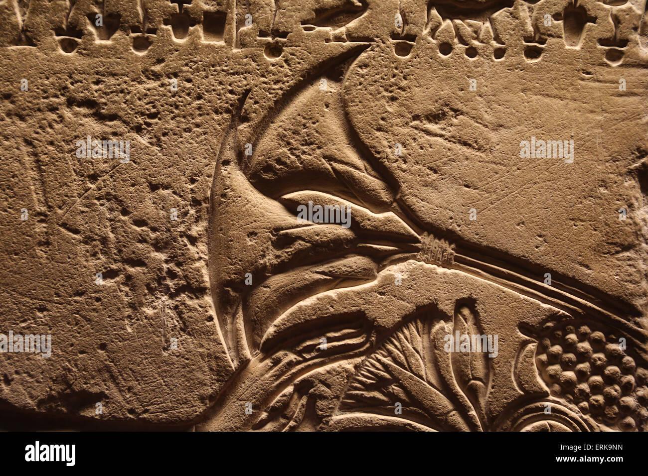 El antiguo Egipto. Alivio. Flor de Loto. Museos Vaticanos. Imagen De Stock