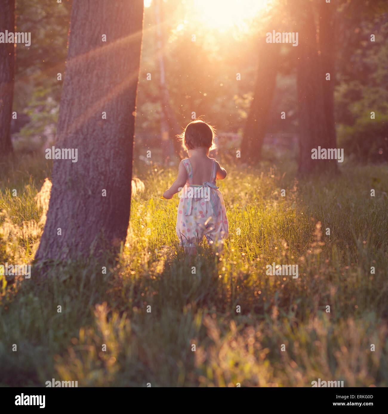 Paseos de bebé en luces al atardecer Imagen De Stock