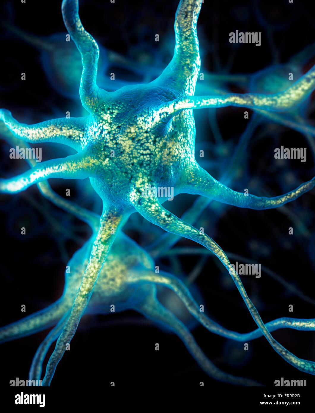 Las células cerebrales neuronas conexiones neuronales conceptual Neurología Imagen De Stock