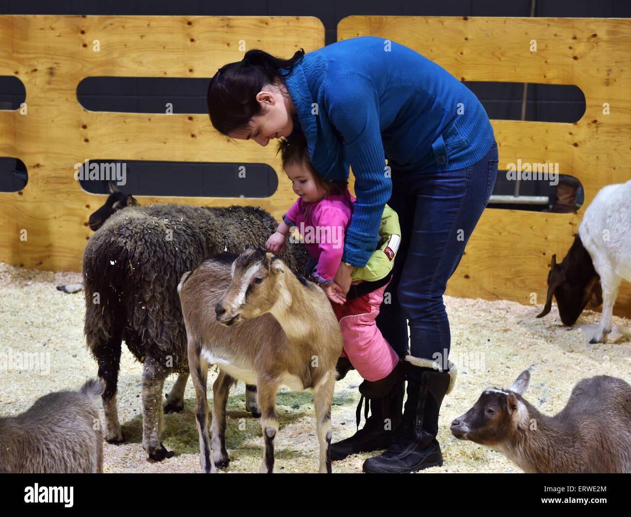 Una madre y su hija infante tocar las cabras en un zoológico de contacto Imagen De Stock