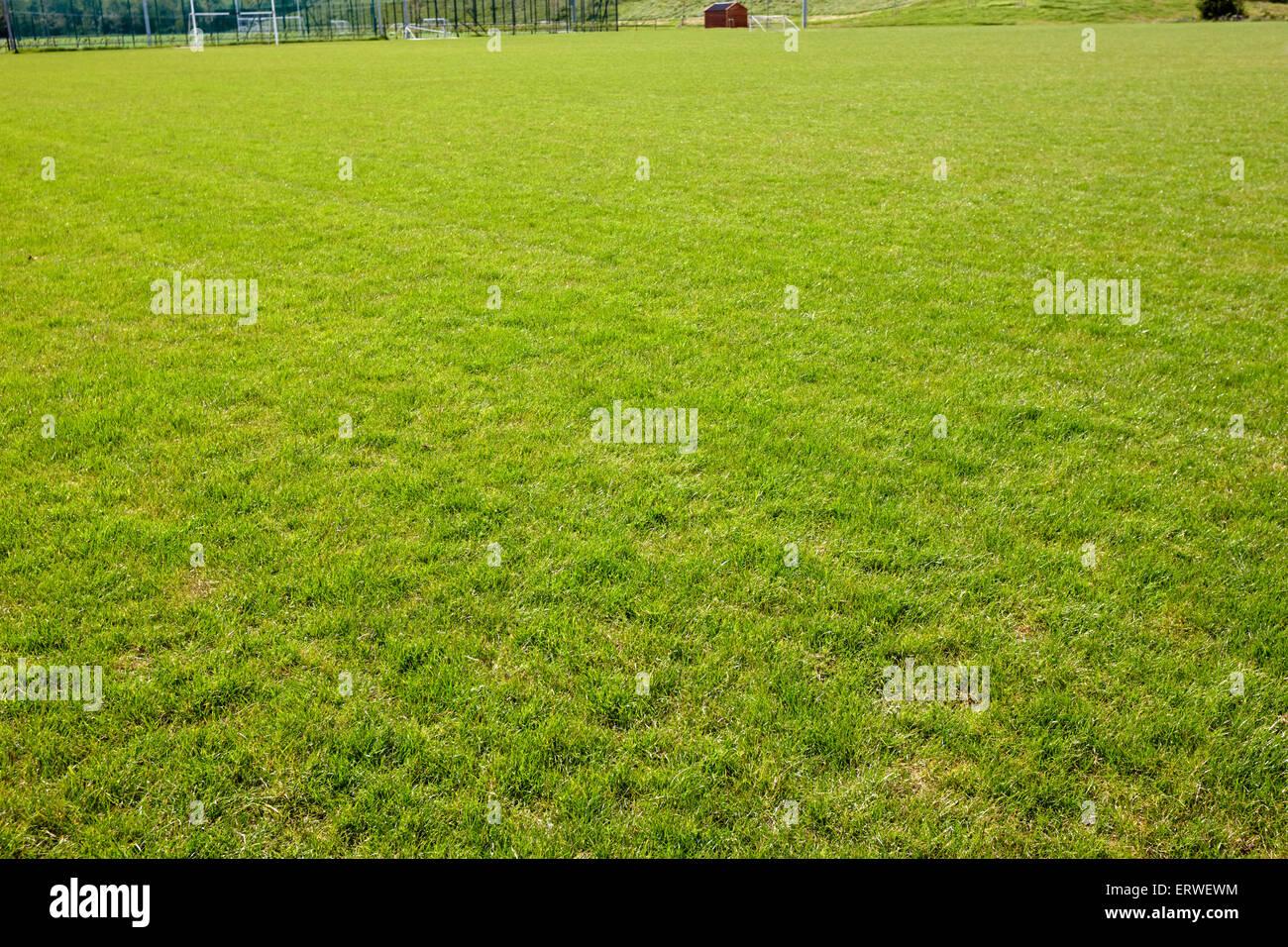 La pasto verde en el campo de juego el polideportivo monaghan república de Irlanda Foto de stock