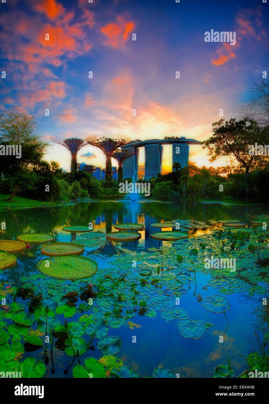 Singapur-jun 07: Noche de vista del estanque de nenúfares y Marina Bay Sands en jardines junto a la bahía Imagen De Stock