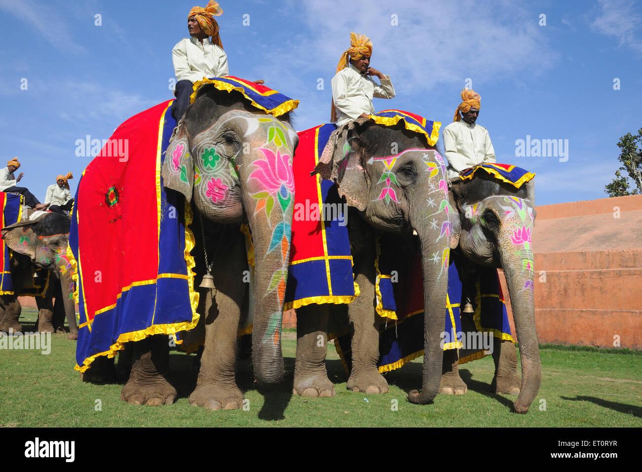 Mahouts sobre los elefantes ; ; ; La India Jaipur Rajastán Foto de stock