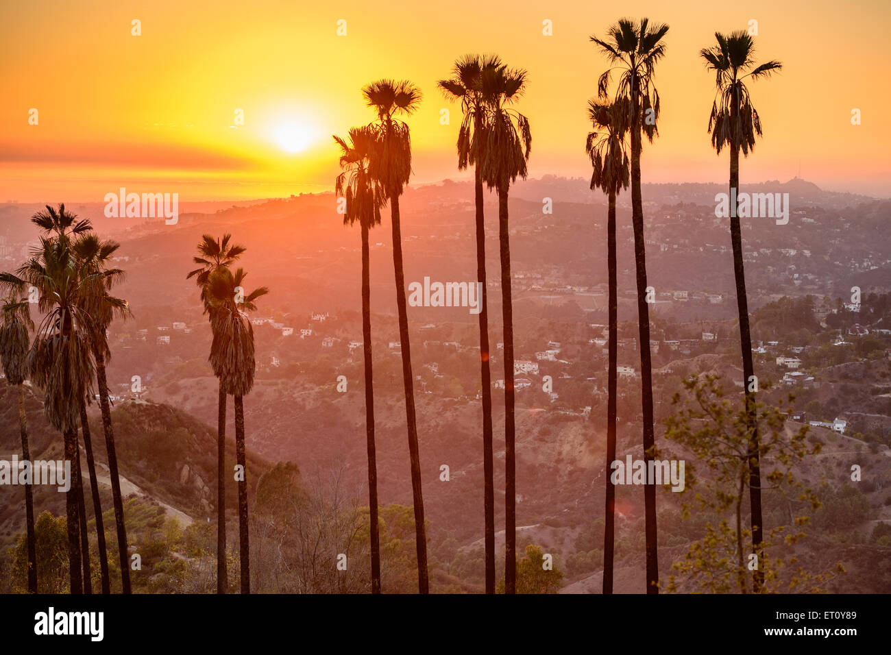 Griffith Park, Los Angeles, California, Estados Unidos. Imagen De Stock