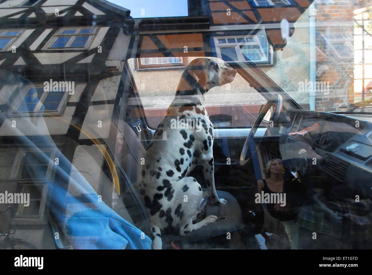El reflejo de la ventanilla de vecindario ; Alemania Imagen De Stock