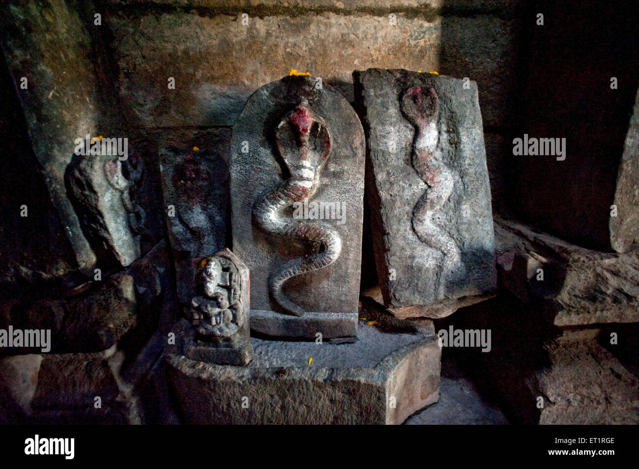 Las serpientes talladas en templo de dambal doddabasappa gadag ; ; Karnataka India Foto de stock