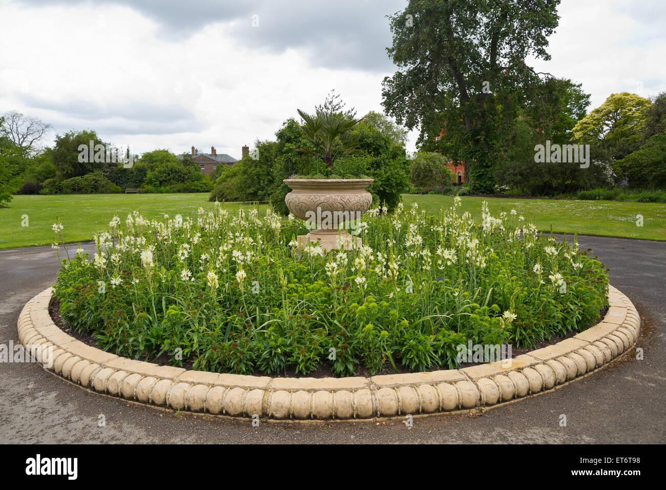 Real Jardín Botánico de Kew - Londres, Reino Unido, Europa Foto ...