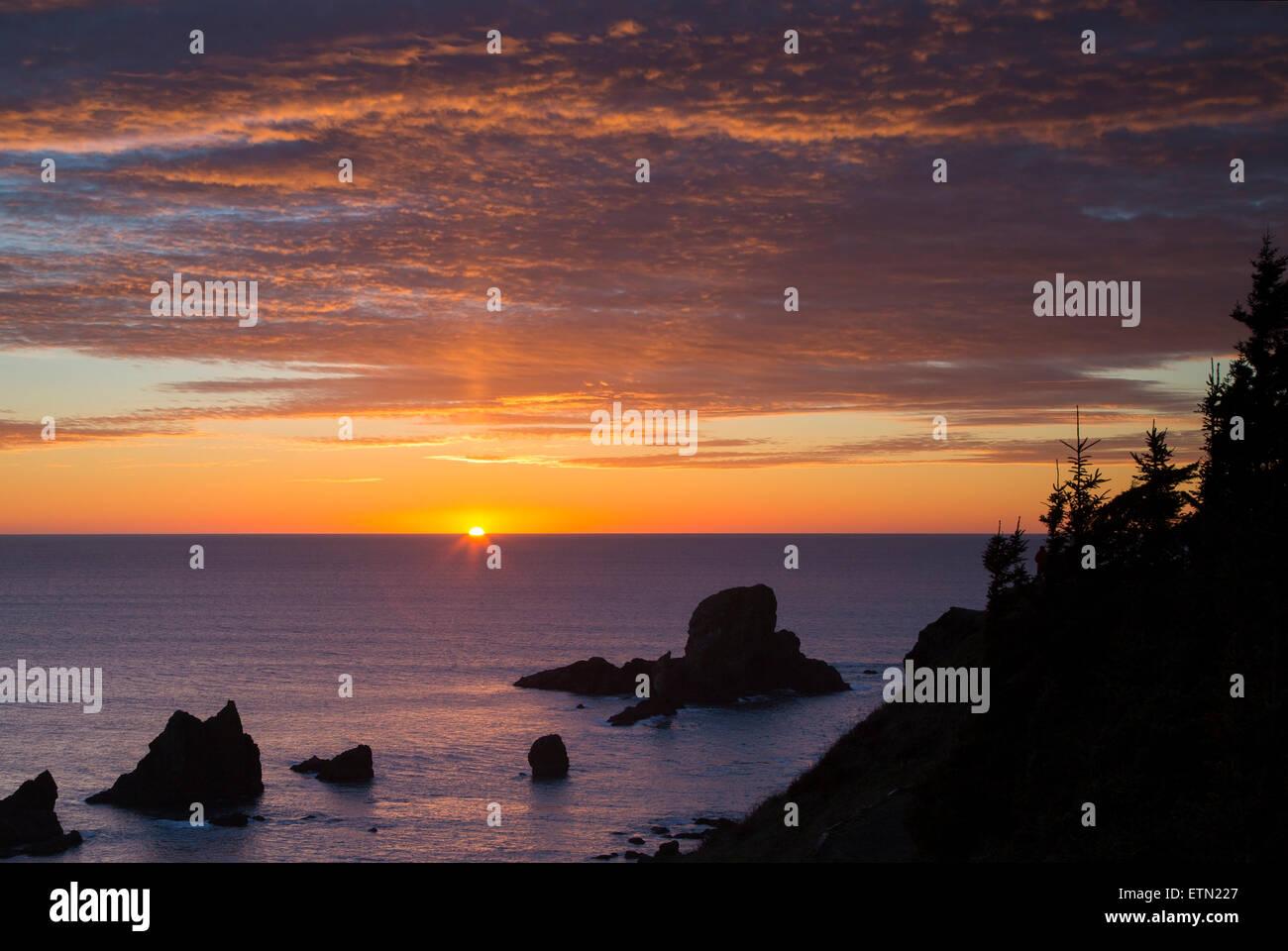Ajuste la luz solar por Seastacks y Ecola State Park cerca de Cannon Beach, Oregón, EE.UU. Foto de stock