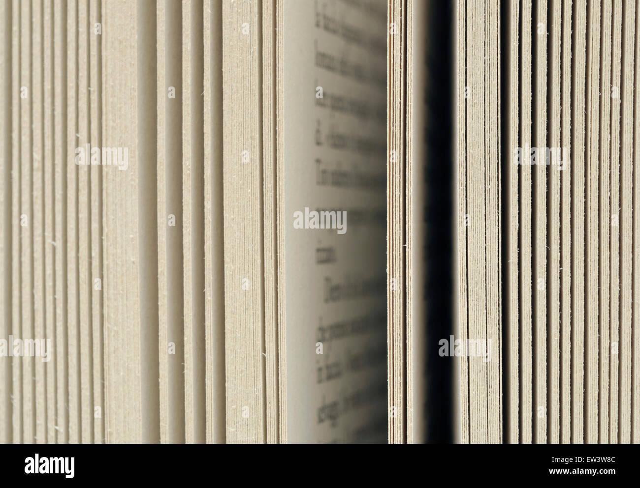 páginas del libro Imagen De Stock