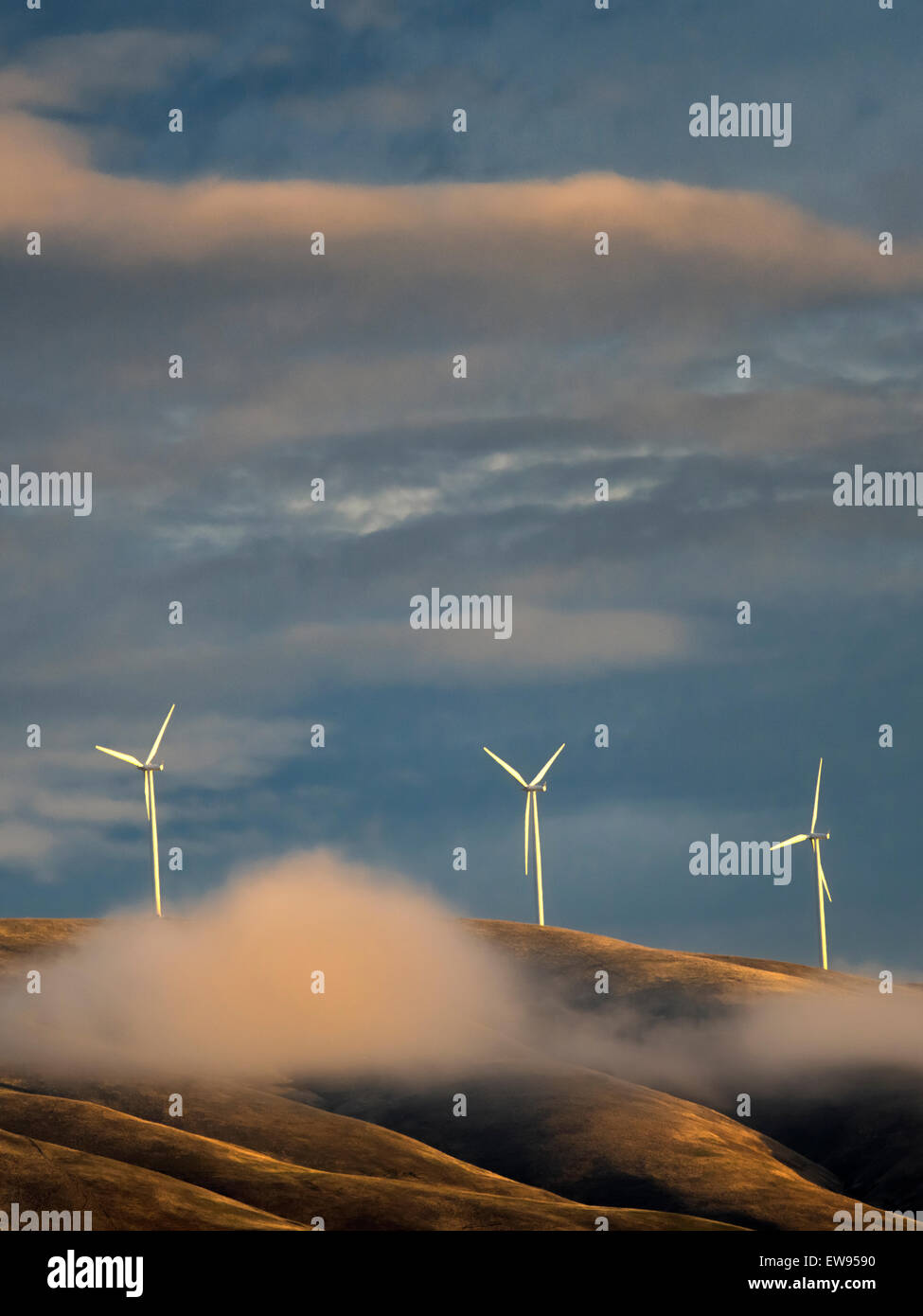 Molinos de viento cerca de la garganta del río Columbia, Oregon Imagen De Stock