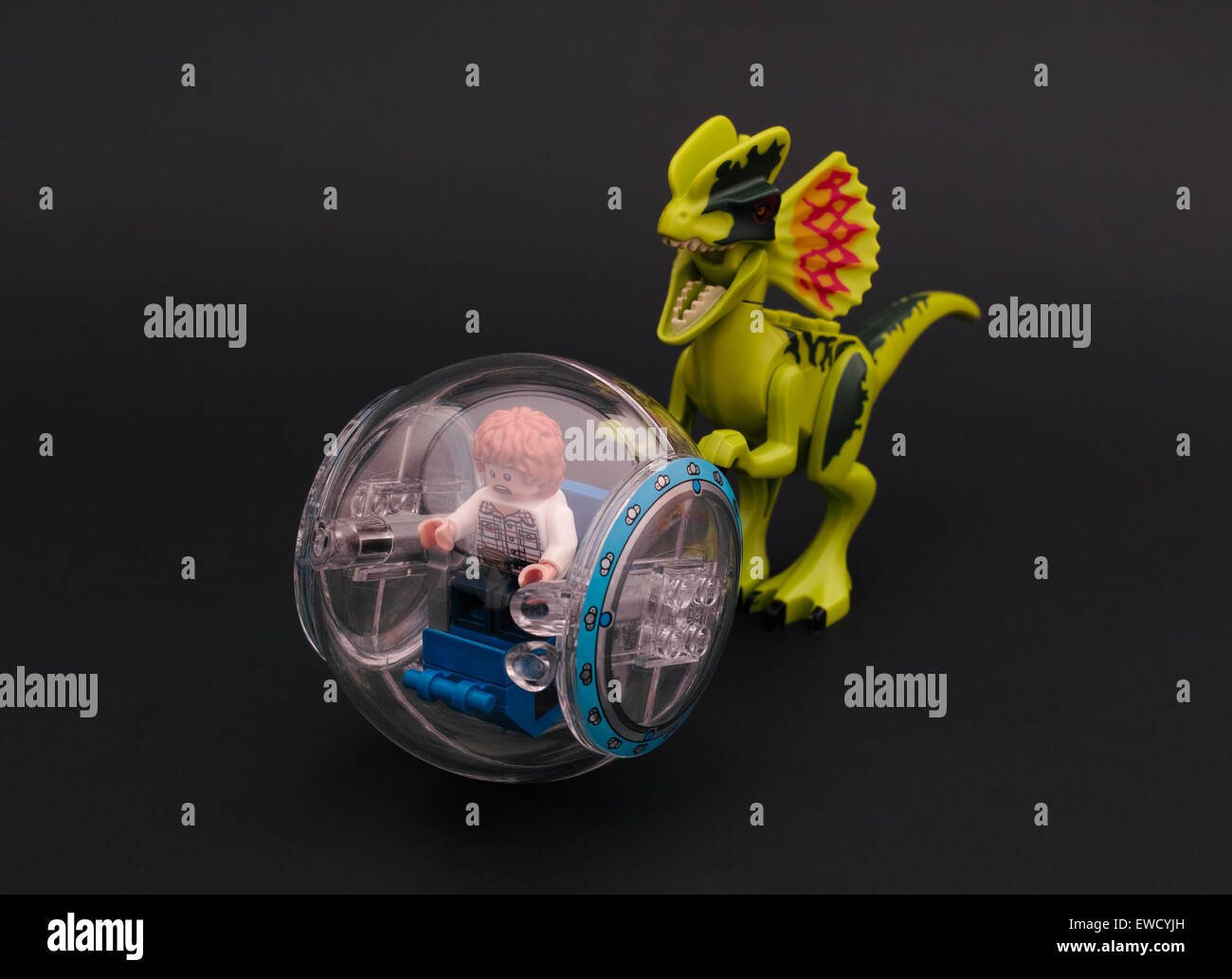 Tambov, Rusia - Junio 23, 2015 Lego Jurassic Park. Gris en un gyrosphere minifigure perseguido por un dilophosaurus. Imagen De Stock