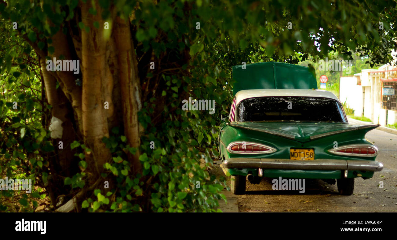 Vintage verde coche por un árbol Imagen De Stock
