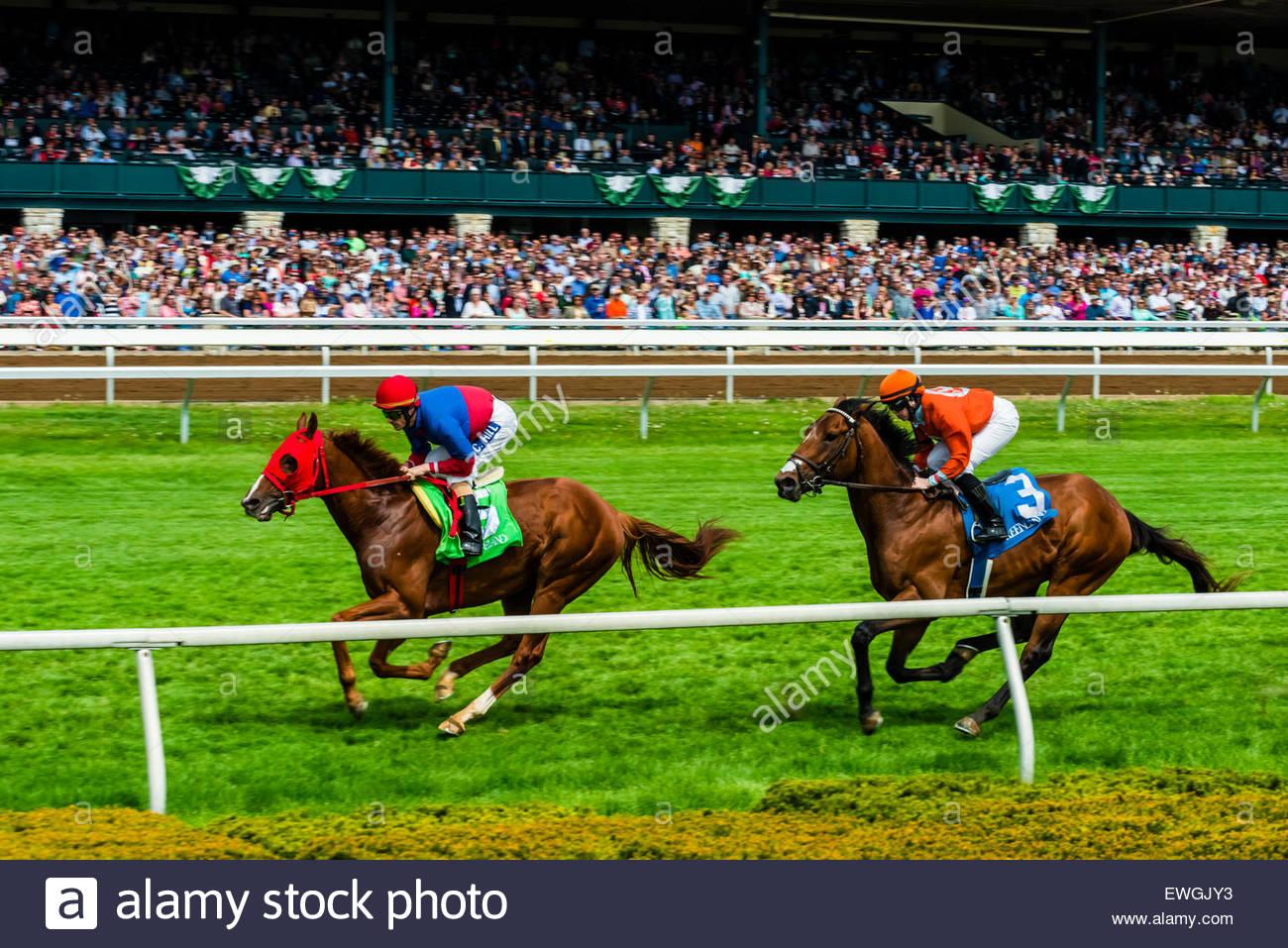 Las carreras de caballos en el Hipódromo Keeneland turf pista en Lexington, Kentucky, Estados Unidos. Imagen De Stock