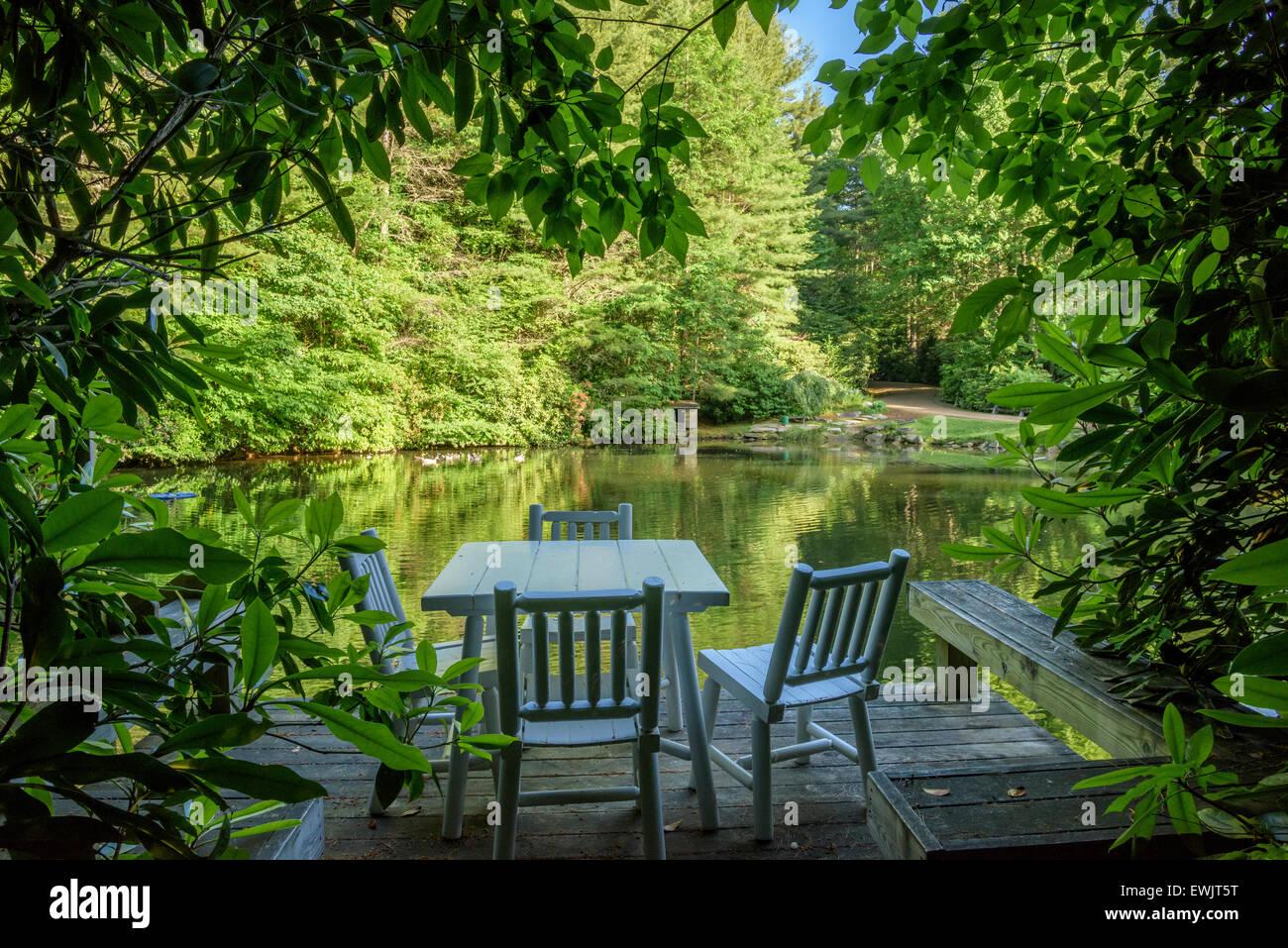 Estanque reflectante en la finca de Carolina del Norte. Imagen De Stock