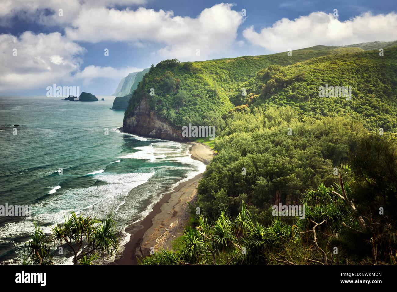 Litoral al valle de Pololu. Hawai, la Isla Grande. Imagen De Stock