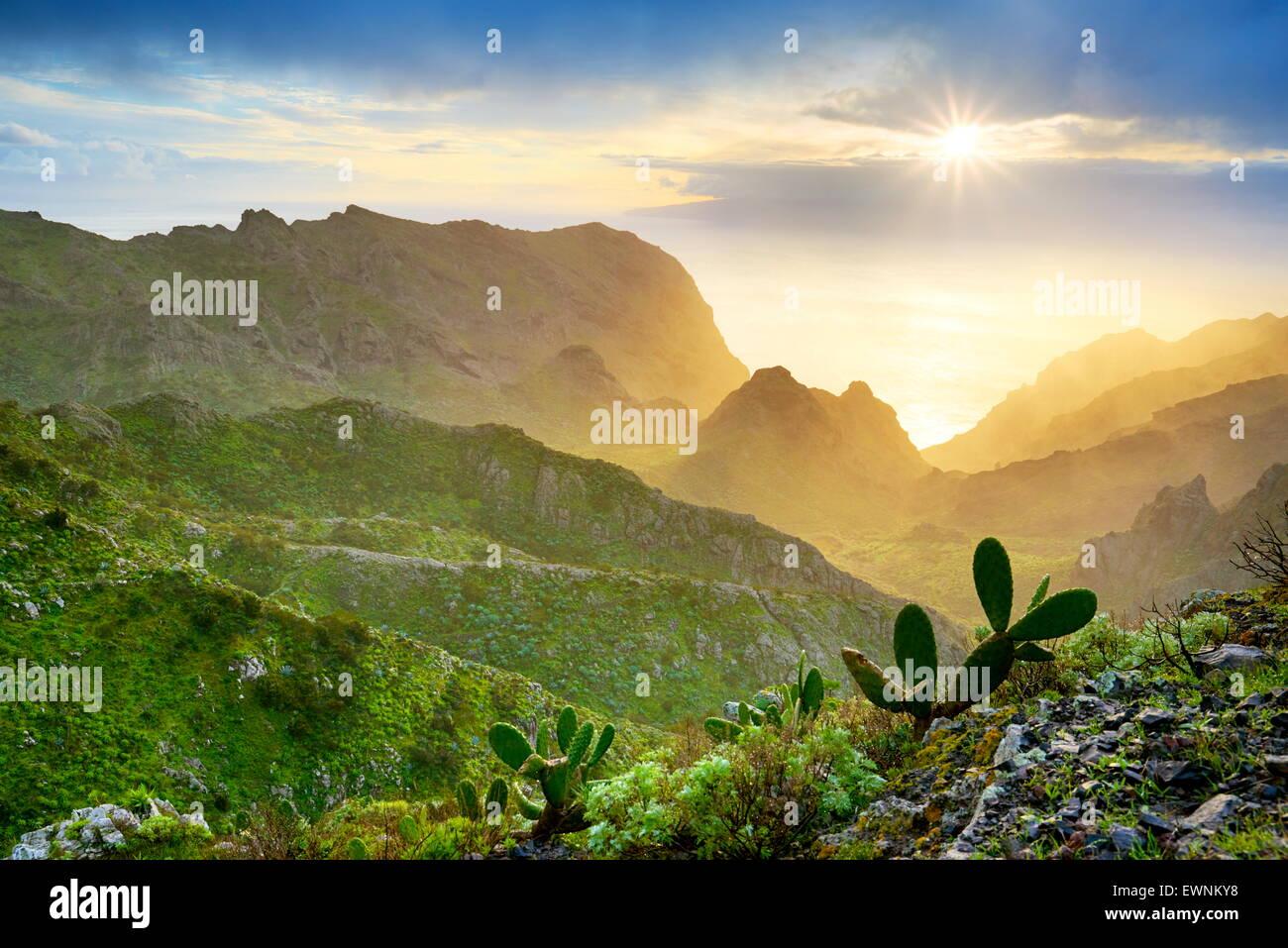 Puesta de sol en Tenerife, Islas Canarias, España Imagen De Stock