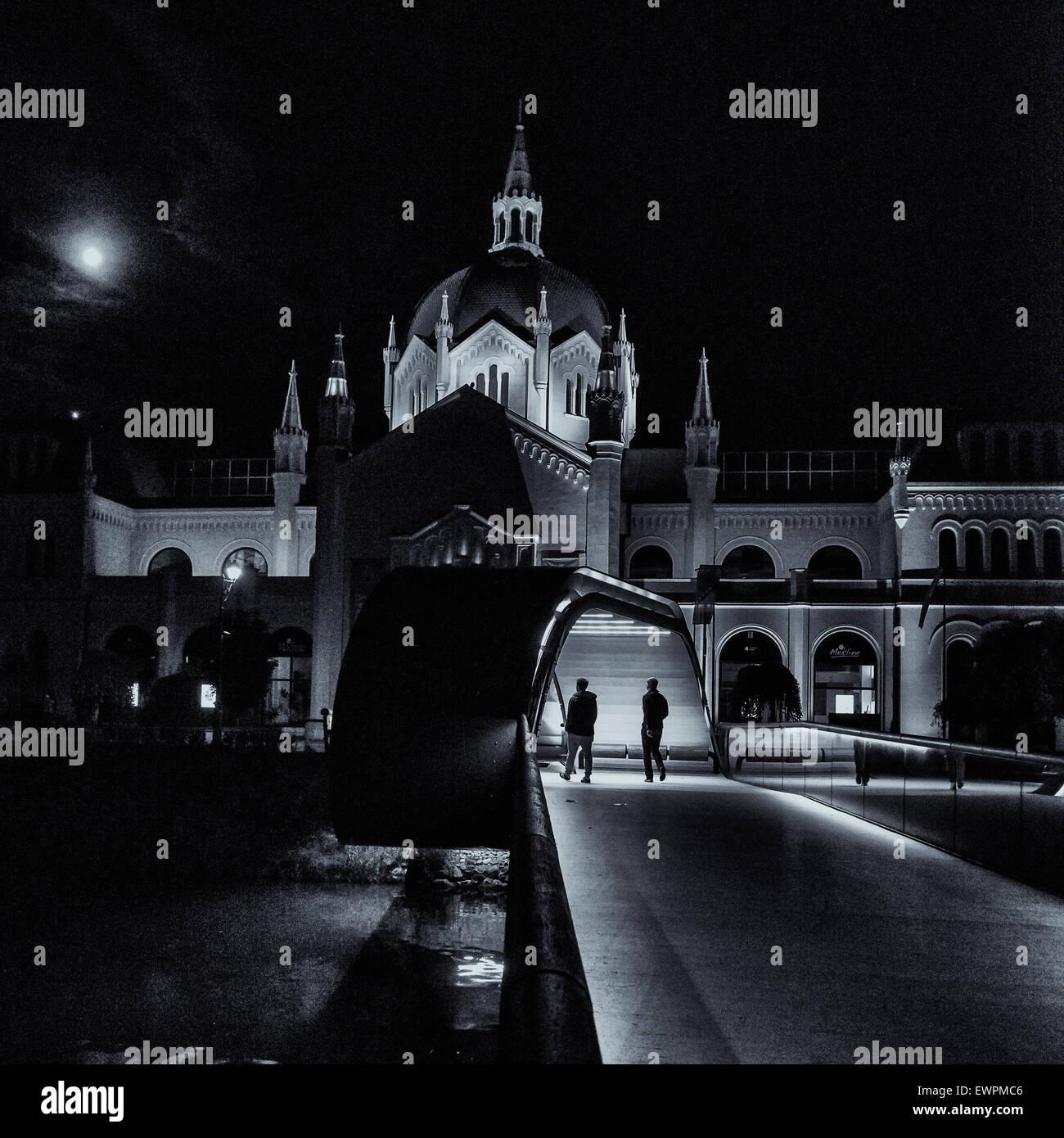 El edificio de la academia de arte con 'festina lente' Puente en Sarajevo por la noche Imagen De Stock