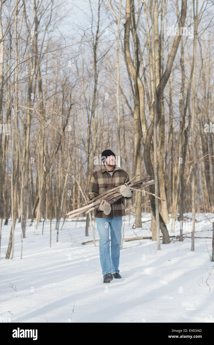 El Hombre recogiendo leña en el bosque, Young's Point, Ontario, Canadá Imagen De Stock