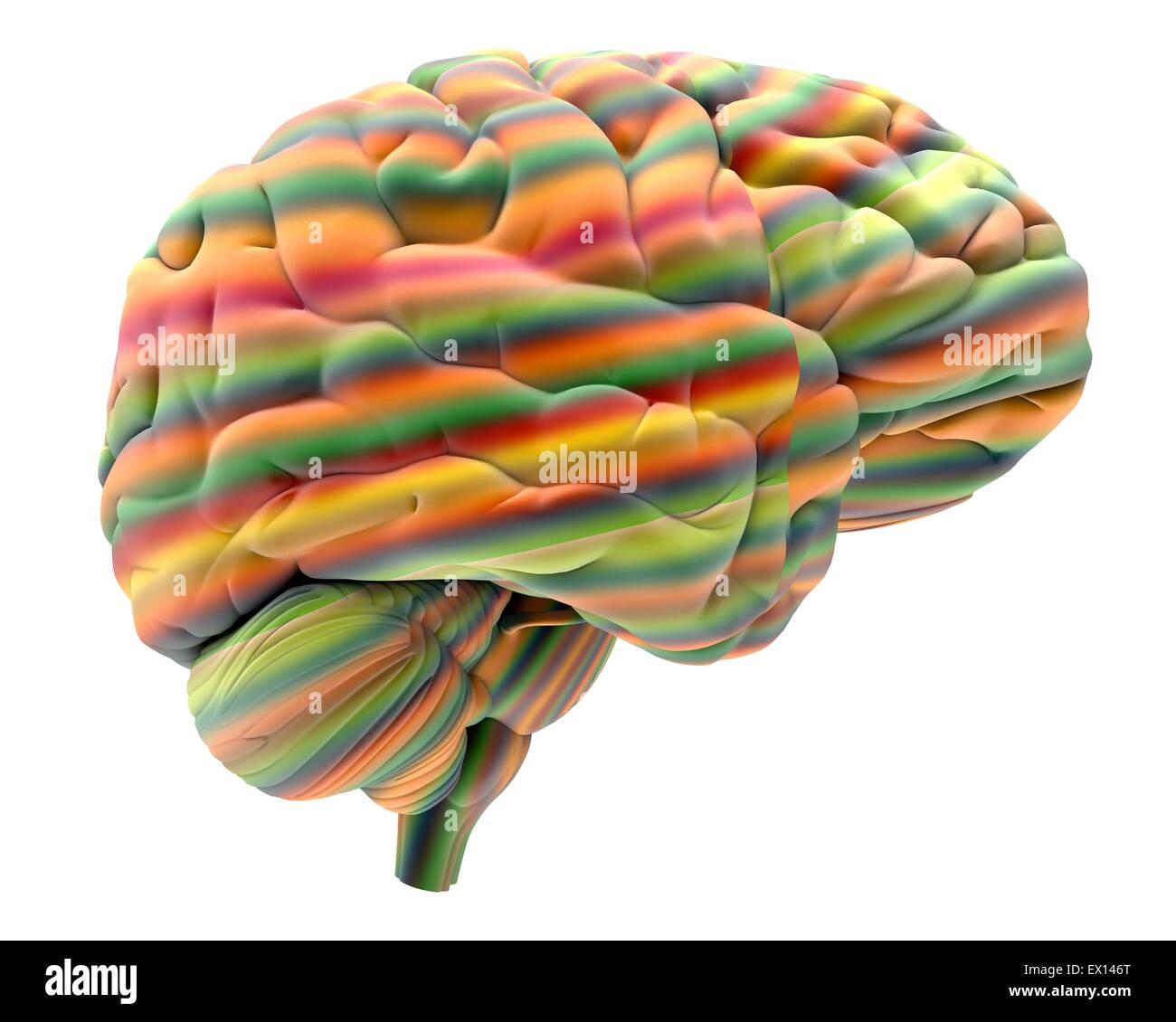 Cerebro computadora abstracta obra de arte de un cerebro humano en la parte frontal del cerebro es el cerebro derecho Imagen De Stock