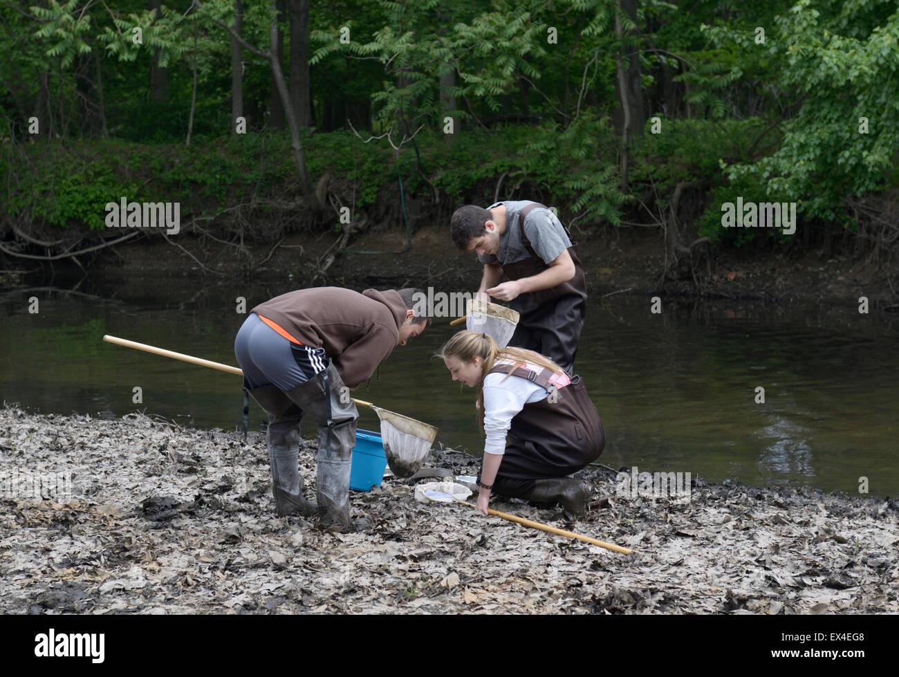 Los estudiantes de secundaria controlar redes acuáticas para indicadores de la calidad del agua en un río Imagen De Stock