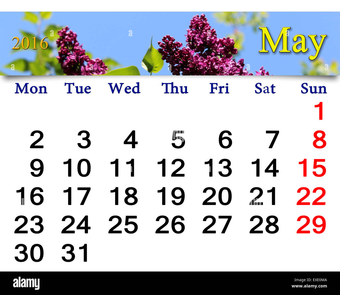 Calendario De Mayo De 2016 Con Flores De Color Lila Calendario