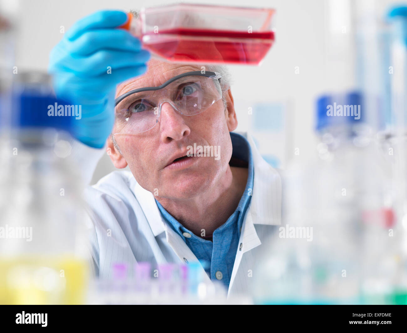 Cerca del biólogo celular sosteniendo un matraz conteniendo células madre Foto de stock