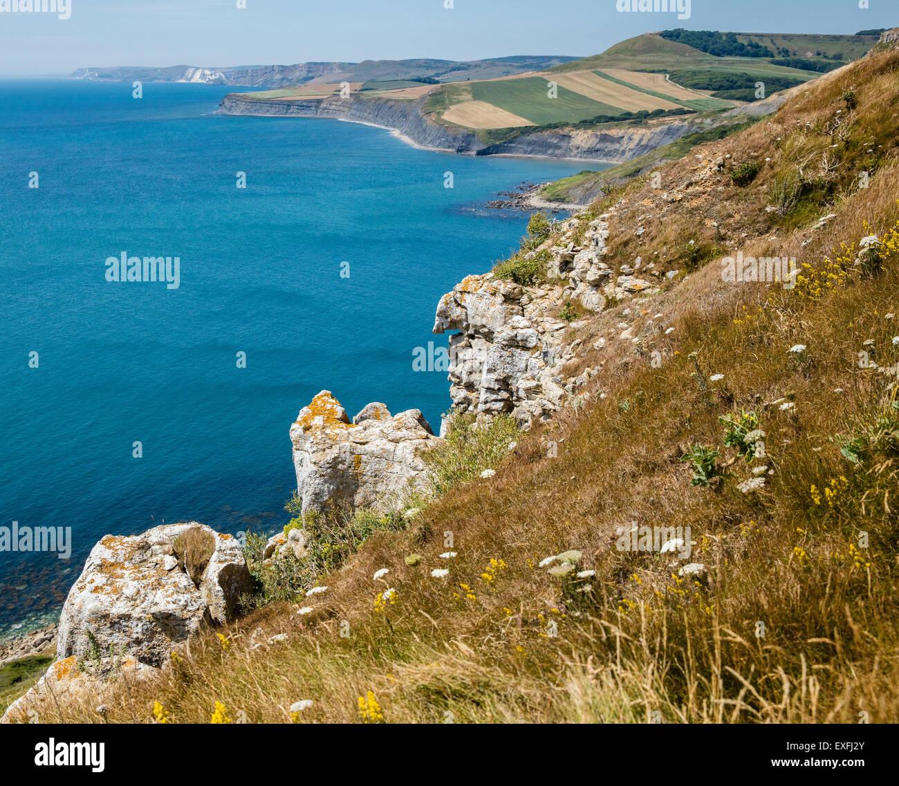 Mirando hacia la piscina y Swyre Chapman Jefe de Emmett's Hill en San Aldhelm's head en la costa de Dorset UK Foto de stock